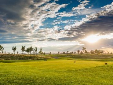 Doni-Travel Golf Tour Borsa