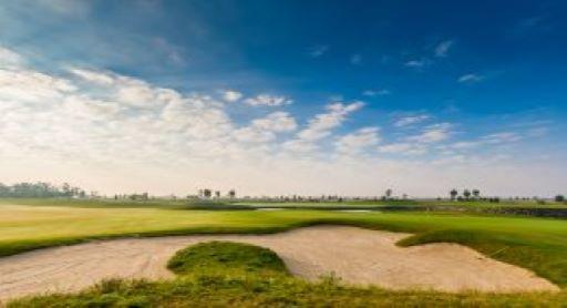 golf bg