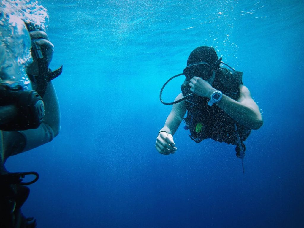 sea-ocean-recreation-diving-underwater-biology-76680-pxhere.com (1)
